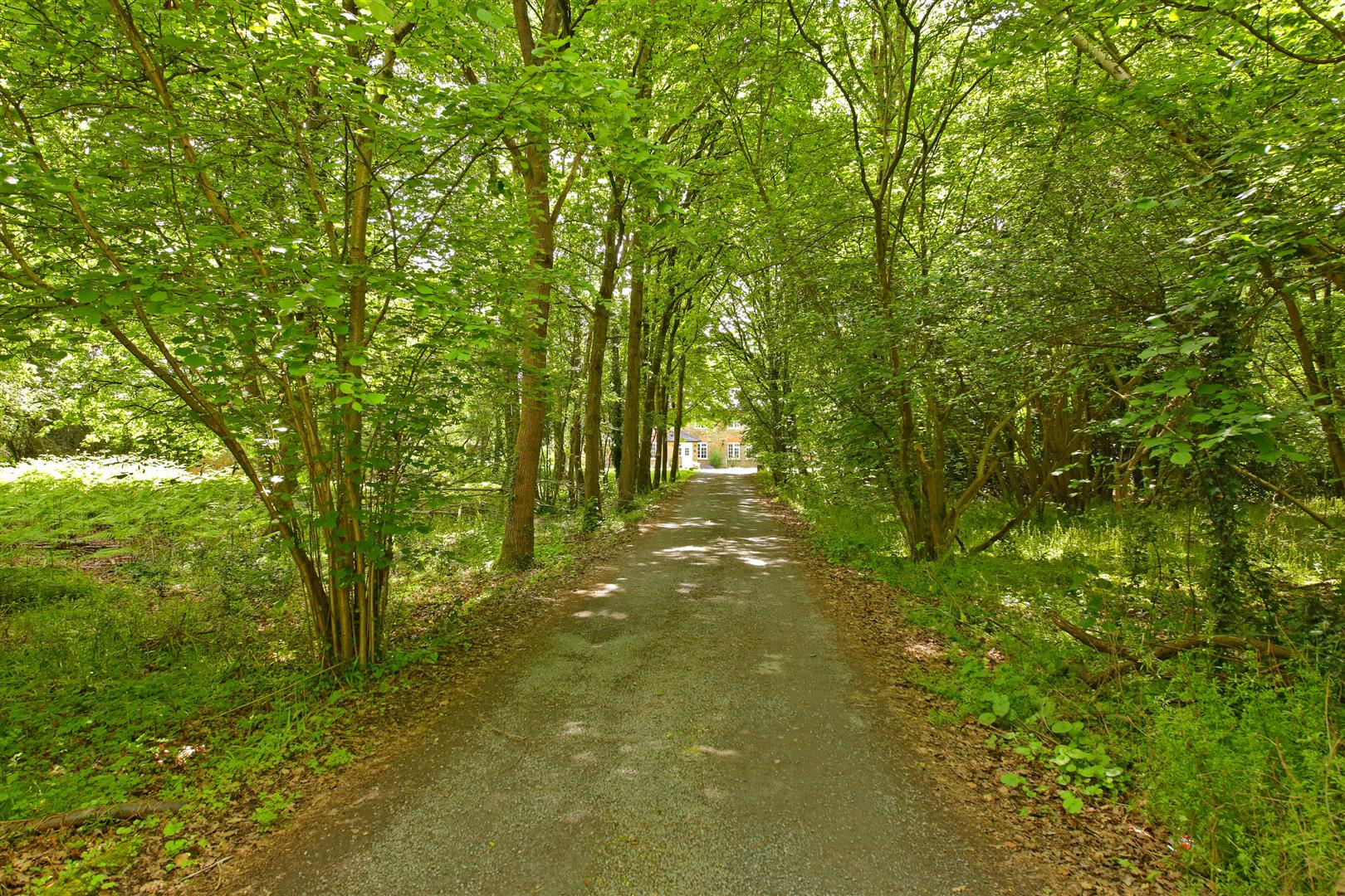 3 bed for sale in Station Road, Bricket Wood - (Property Image 15)