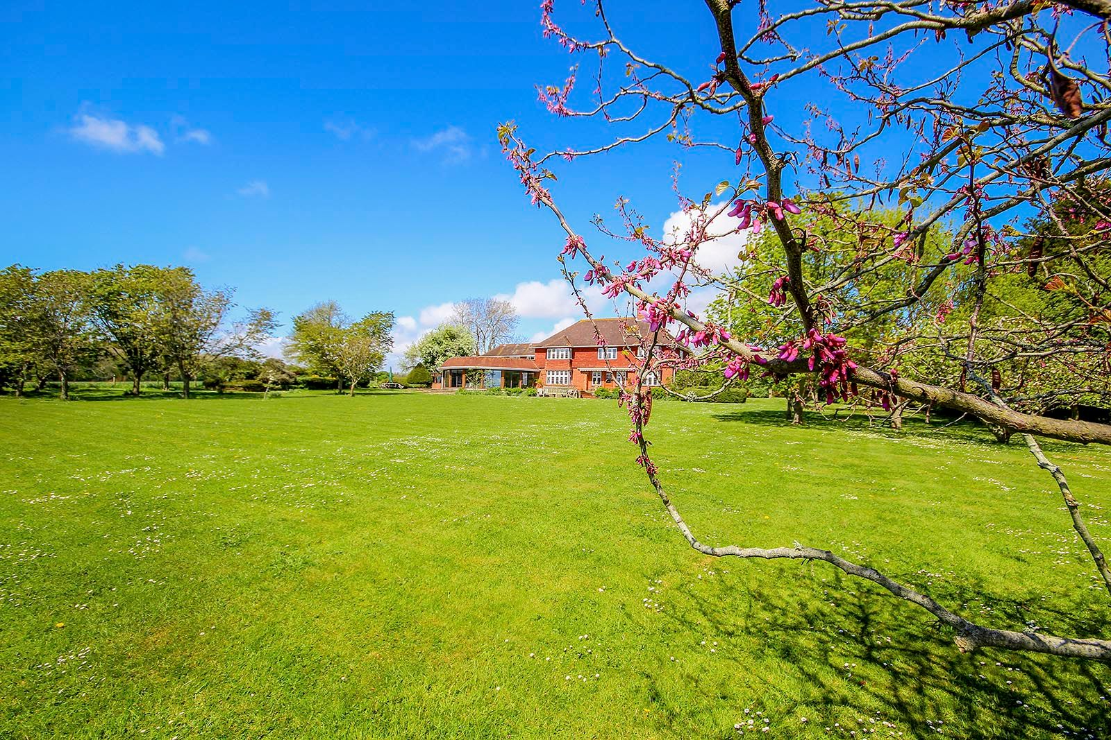 4 bed house for sale in The Street  - Property Image 28