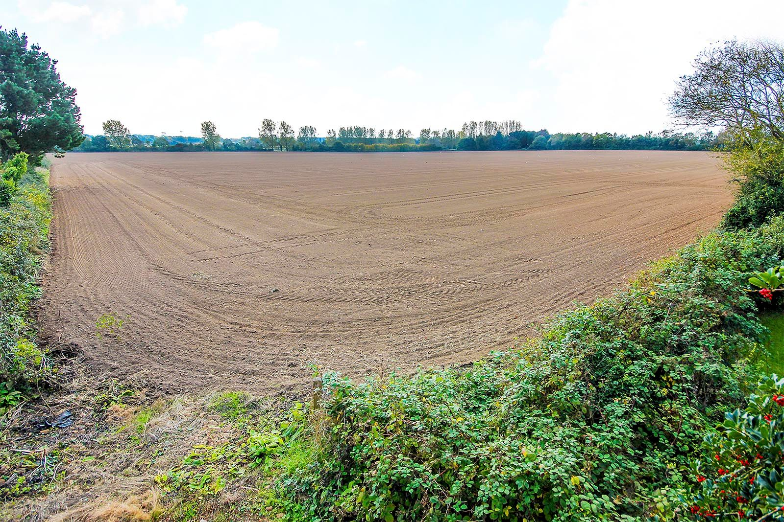 2 bed House for sale in Arundel - Outlook over open fields at the rear (Property Image 16)